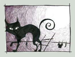 THE black cat by a3107