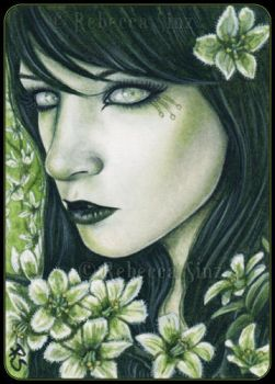 ACEO -- False Hellebore by ElvenstarArt