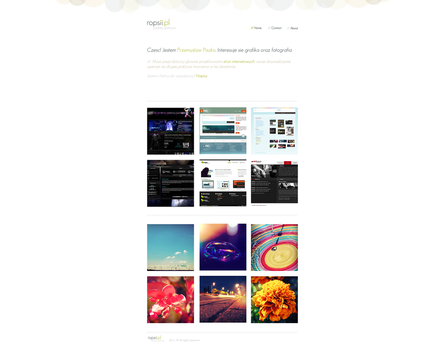 Small Portfolio Theme by rops14