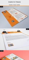 Creative 3 in 1 Resume by CreativeCrunk