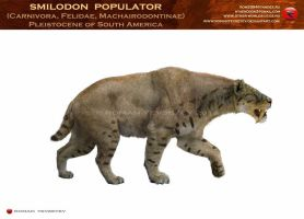Smilodon populator by RomanYevseyev