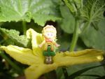 The Cucumber Faerie by Realder