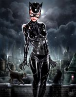 I Am Catwoman, Hear Me Roar by RUIZBURGOS