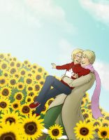 APH - Thank You by AlbinoNial