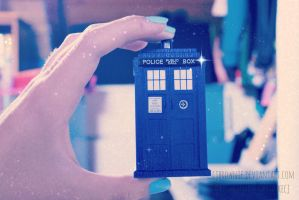 Honey, I shrunk the tardis! by cjbrownie