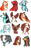 Brush Breeds Compilation Batch 1 by Stray-Sketches
