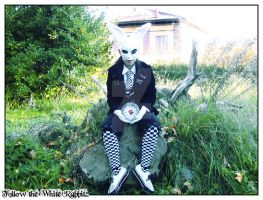 The White Rabbit by Goth-Virgy