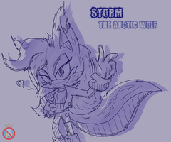 CM: strom the arctic wolf Sonic Channel style by shadowhatesomochao