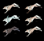 Lycanroc Variations by Venomouswolf