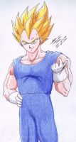 Vegeta 3 Traditionally Colored by hirokada