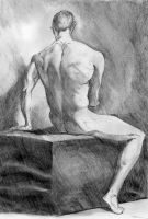Nude Male 11 by scifo