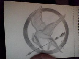 Hunger Game by Nanaxxis-inxxthe-Uk