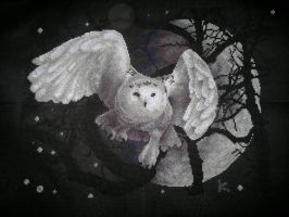 white Owl by ouraion