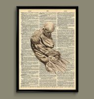 body anatomy dictionary print by ColourInk