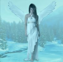 Snow Angel by Alz-Stock-and-Art