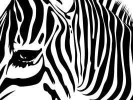 ..and stripes.wallpaper.3 by SunIsRising