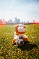 lomography-ing by chuckTHEchick
