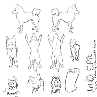 Free canine Ref sheet by falanne