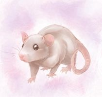 Speedpaint: Little Rat by Zilleniose