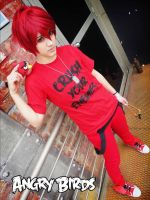 Red Bird - Angry Birds Cosplay by Hikuja