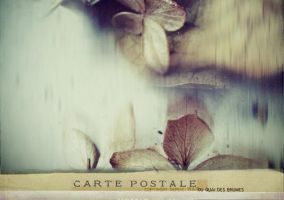carte postale - 019 by laflaneuse