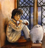 hour painting Harry and Owl by BlueBirdie