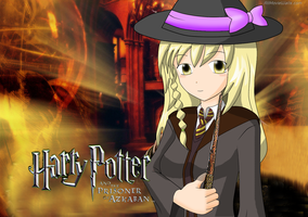 TouHou Harry Potter by redcomic