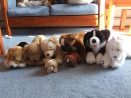 Group 3- Build-a-bear dogs by Zroya21