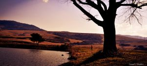 Alone human standing at lake by Samuels-Graphics