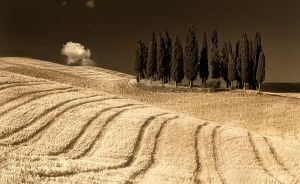 Tuscan dream by Addran