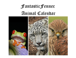 Animal Calendar by FantasticFennec