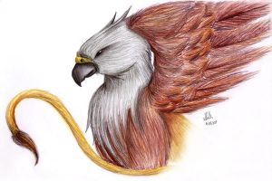 Griffin by Katzel