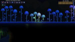 ''Night shot'' : middle of my mushroom biome by Epicsunrise