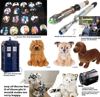 stuff i want for my B-Day 2013 by webkinzfun8