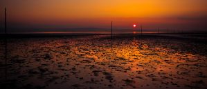 Holy Island Causeway by newcastlemale