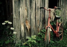 bicycle by ofu5