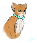 Cat by Teegsxx