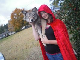 Who's Afraid of the Big Bad Wolf? by GoWaterTribe