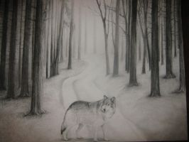 Wolf Charcoal Drawing by Mimitchki