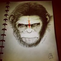 Dawn of the Planet of the Apes (Caesar) by Akrisna