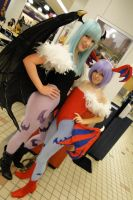 Lilith and Morrigan Aensland Cosplay 1 by KohimeBashiri
