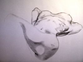 lifedrawing15 by echoiic