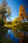 The colors of Fall... _35_ by my-shots