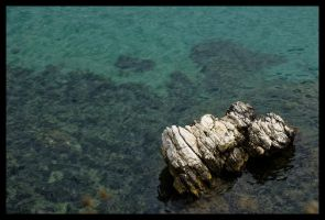 Calcified Rock by Vagrant123