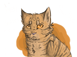Warriors 002 Brambleclaw by xXAsheheartXx