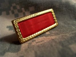 Army Meritorious Unit by Chrippy