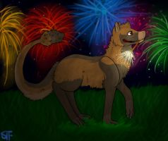 Fireworks by Niloa