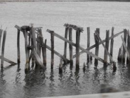 pier by USCGCitasca