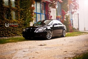 BMW E60 by DimitriBokowPhoto