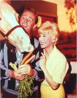Mr.Ed with Alan Young and Connie Hines by slr1238